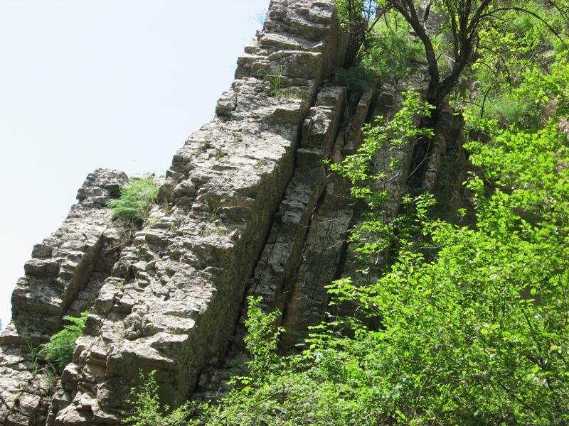 Пласты поменяли положение на вертикальное в резельтате движений земной коры и землетрясений