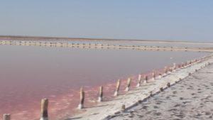 Розовое озеро Сасык-Сиваш